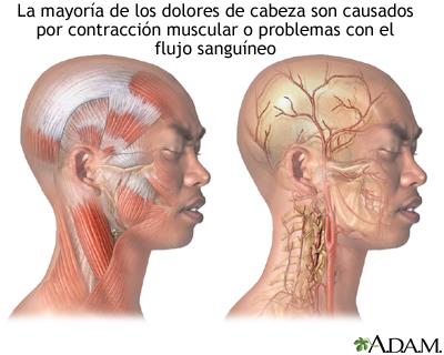 Duele la parte inferior del vientre y los riñones el vientre vzdut
